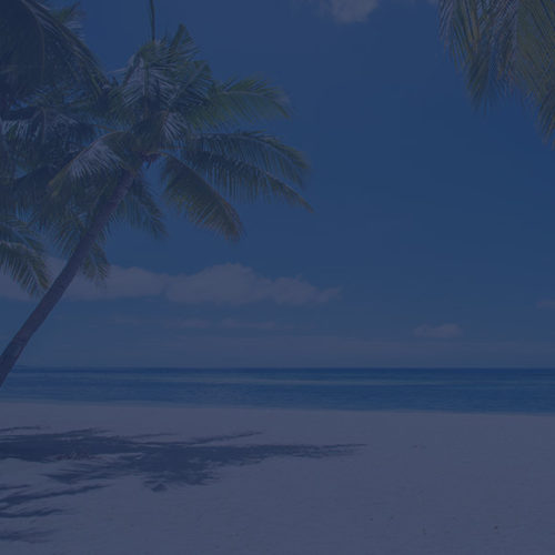 Palm tree on an empty beach front to depict travel insurance by Find Insurance NI